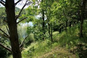 Ligaju ezeras nuo Kiemioniu piliakalnio