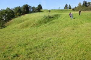Pakalniu piliakalnis IV