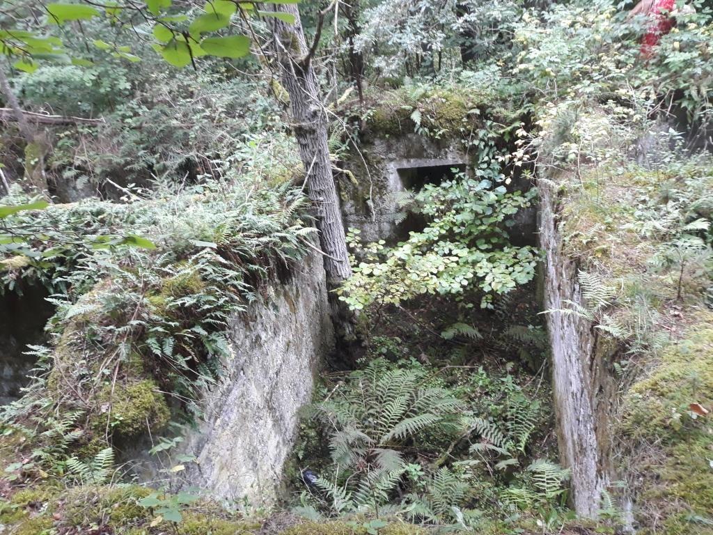 Zarasų rajono tarpukario paveldo keliais